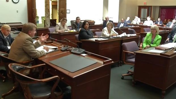Carol Dankert-Maurer and CPS administration appearing before the Erie County Legislature in June 2014.