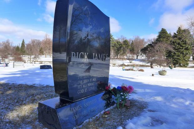 Rick James's headstone in Section 10 of Buffalo's Forest Lawn Cemetery. Photo by Nancy J. Parisi.